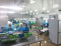 Indonesia Processing Facility